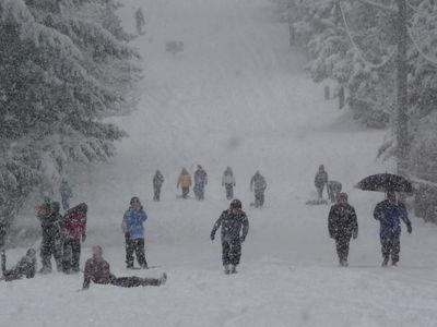 Snow dec 2008 075