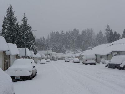 Snow dec 2008 039