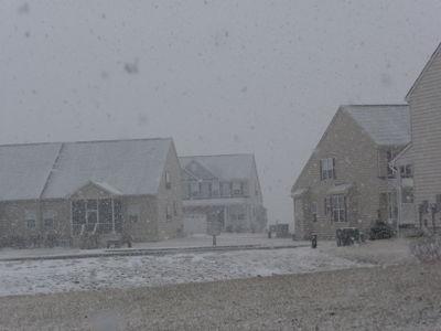 Jan 15 - 23, 2009 Wash, DC & Ron 523