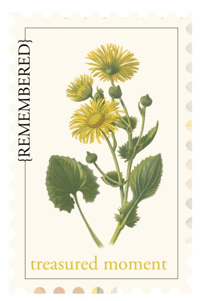 KPertiet_BotanistPostage-treasured