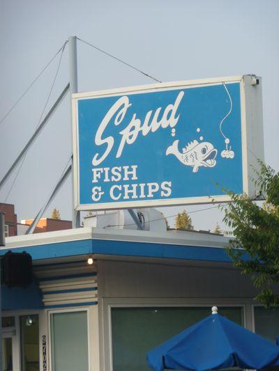 Spuds July 25, 2009 024