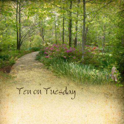 Ten on Tuesday - Gnome copy