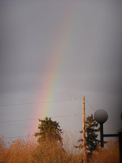 Rainbow on the way to work 002