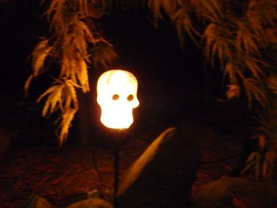 Halloween 2009 053