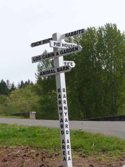 Walkabout No. 31 Kelsy Creek  008