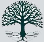 Family_tree_2