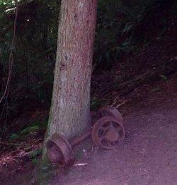 Coalwheel2
