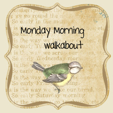 Monday_morning_walkabout_2