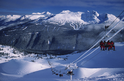 Whistler_image_1_for_web